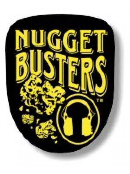 Detector Pro Nugget Buster