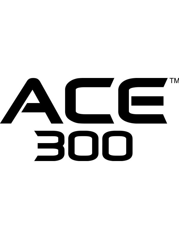 Garrett Ace 300