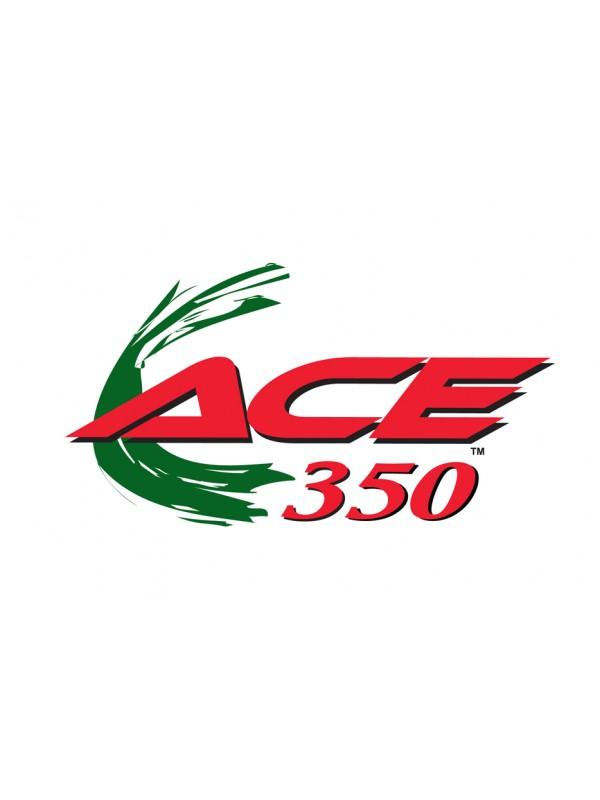 Garrett Ace 350